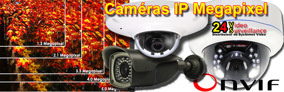 camera de surveillance grossiste